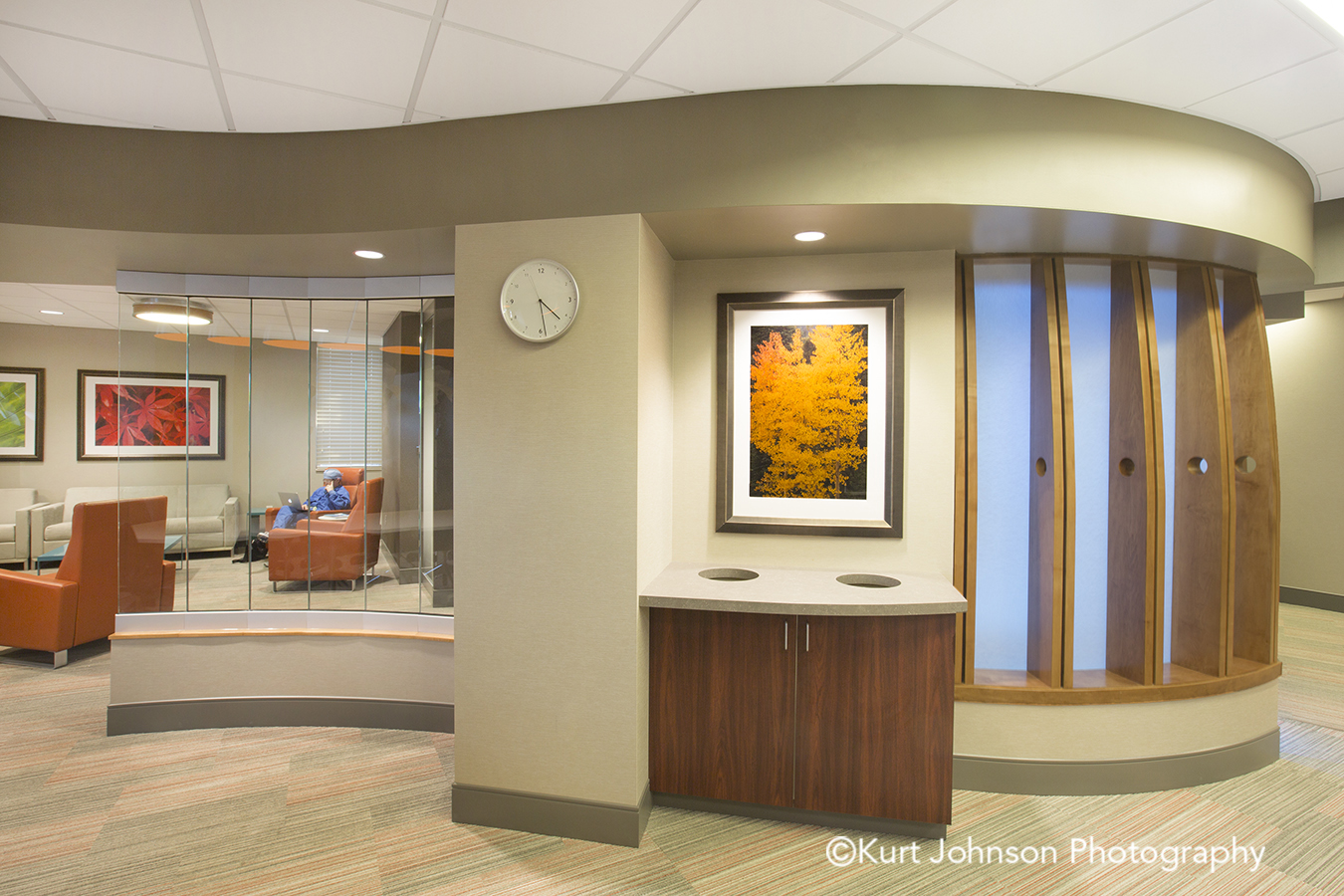 Bryan Health doctors lounge hospital Lincoln Nebraska framed botanical yellow leaves tree art install installation