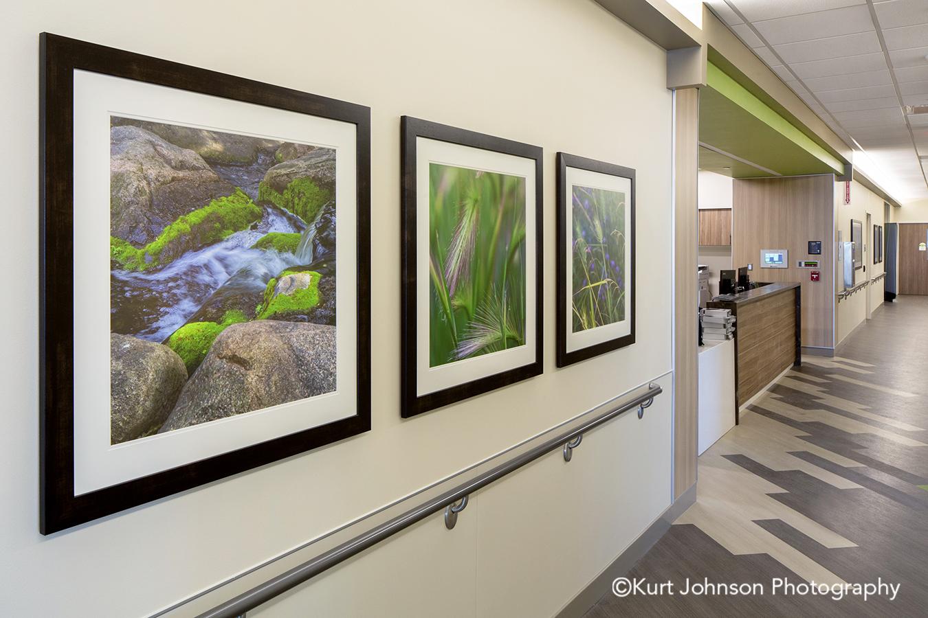 Regional Health Medical Center Advanced Orthopedic and Sports Medicine Institute Rapid City South Dakota framed healthcare art water green grass install installation hallway corridor