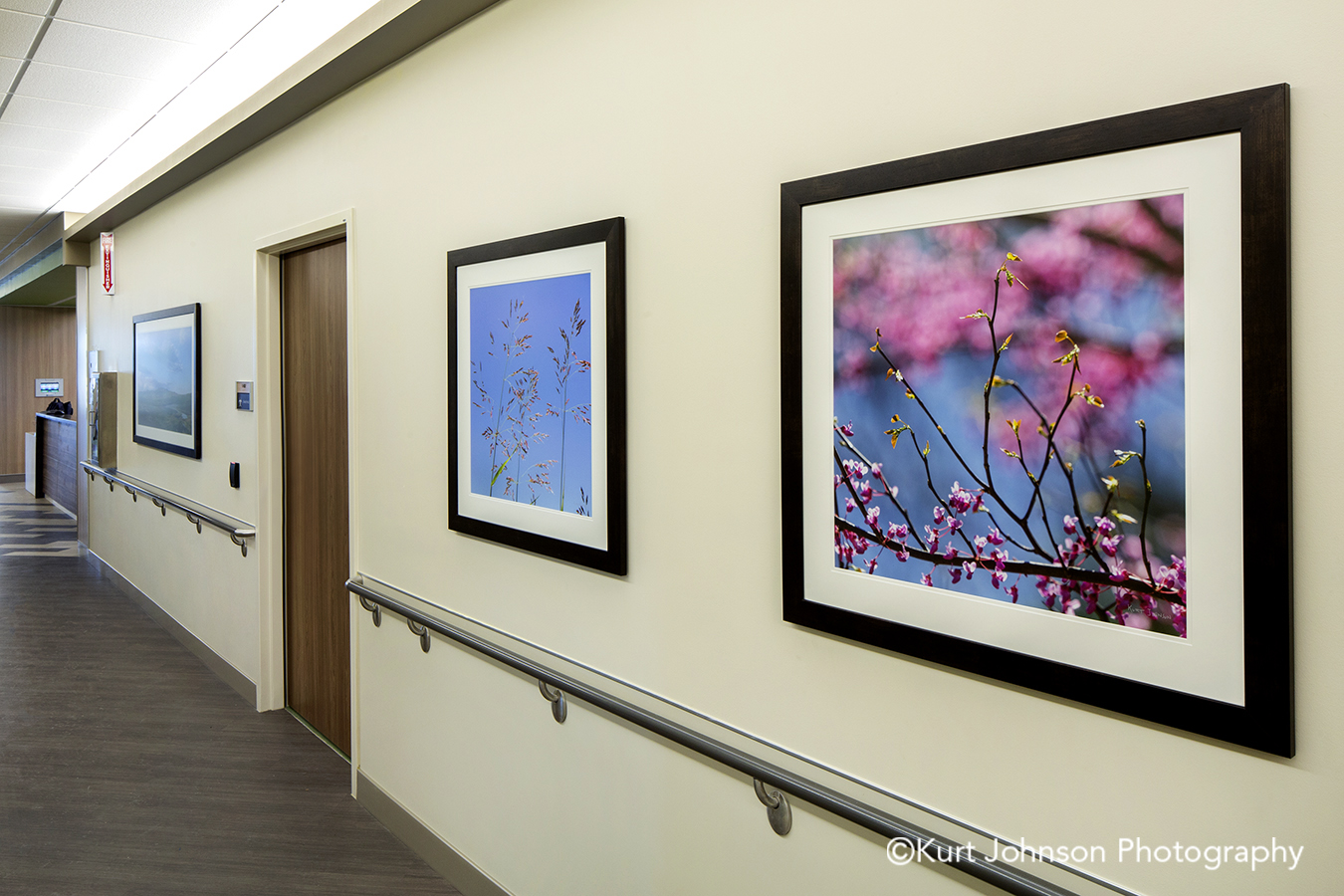 Regional Health Medical Center Advanced Orthopedic and Sports Medicine Institute Rapid City South Dakota framed healthcare art blue sky pink flowering tree install installation hallway corridor
