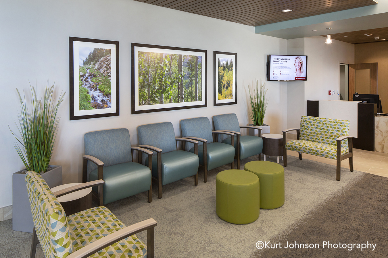 Regional Health Medical Center Advanced Orthopedic and Sports Medicine Institute Rapid City South Dakota framed healthcare art green tree trees leaves blue sky grass grasses install installation waiting room lobby seating chairs