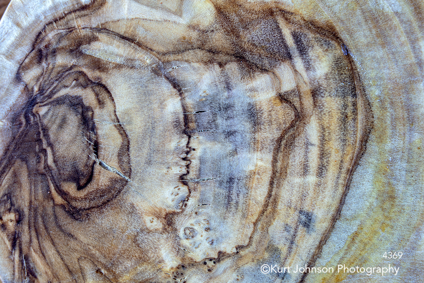 brown blue lines pattern agate texture textures