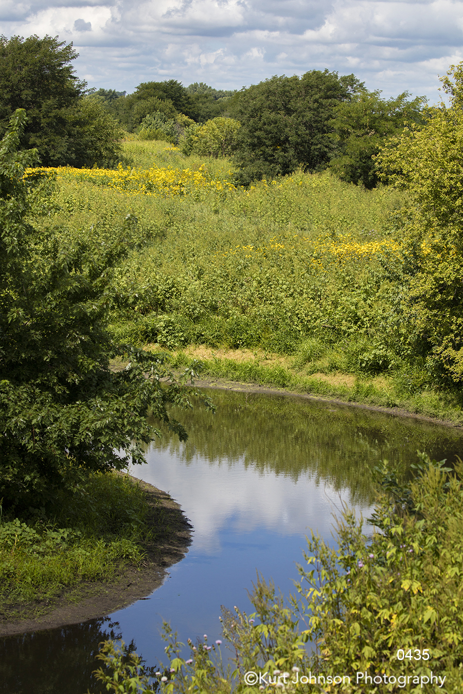 calm still water blue sky clouds reflection green trees field waterscape landscape