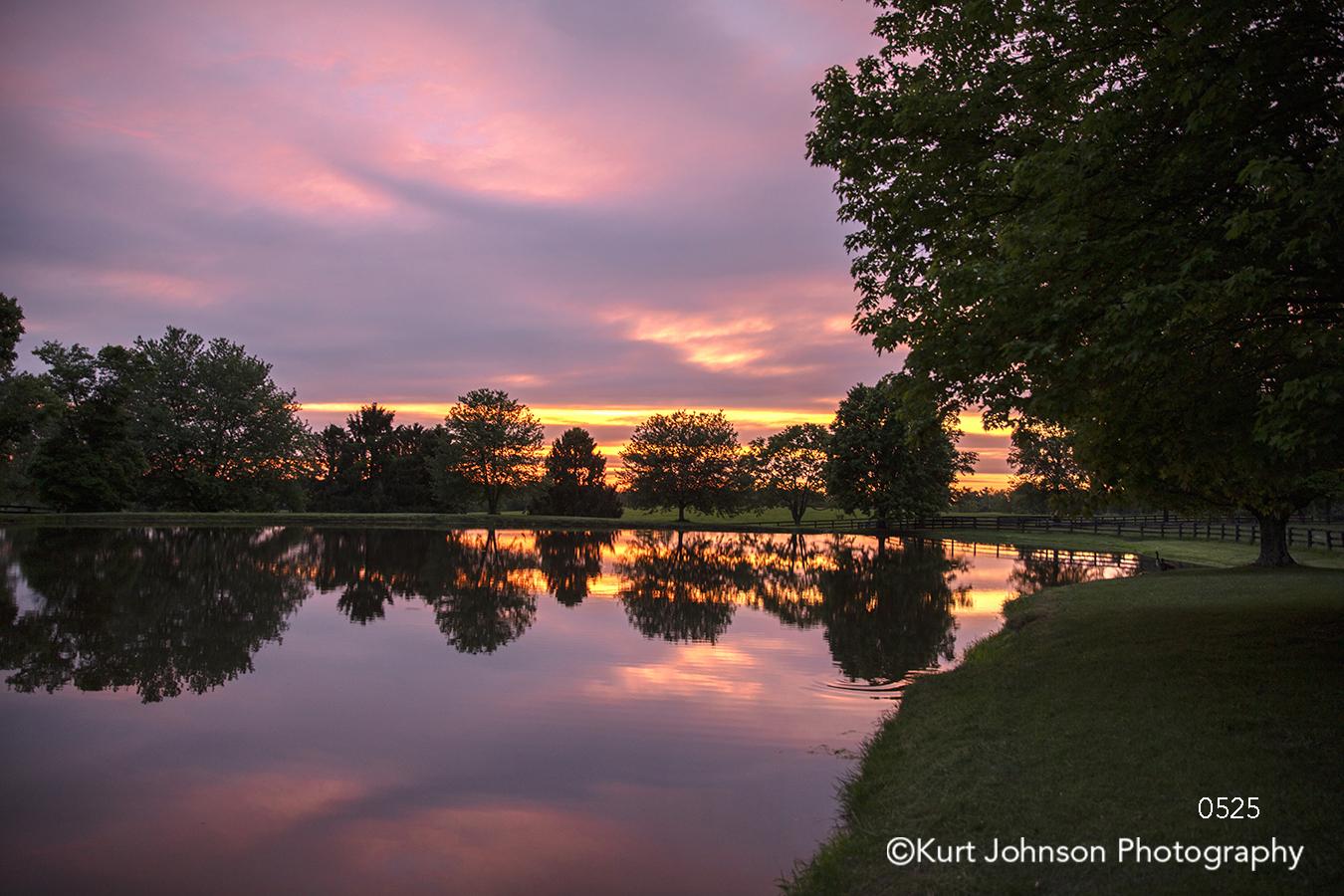 purple pink orange sky sunset sunrise calm still water reflection trees light waterscape landscape