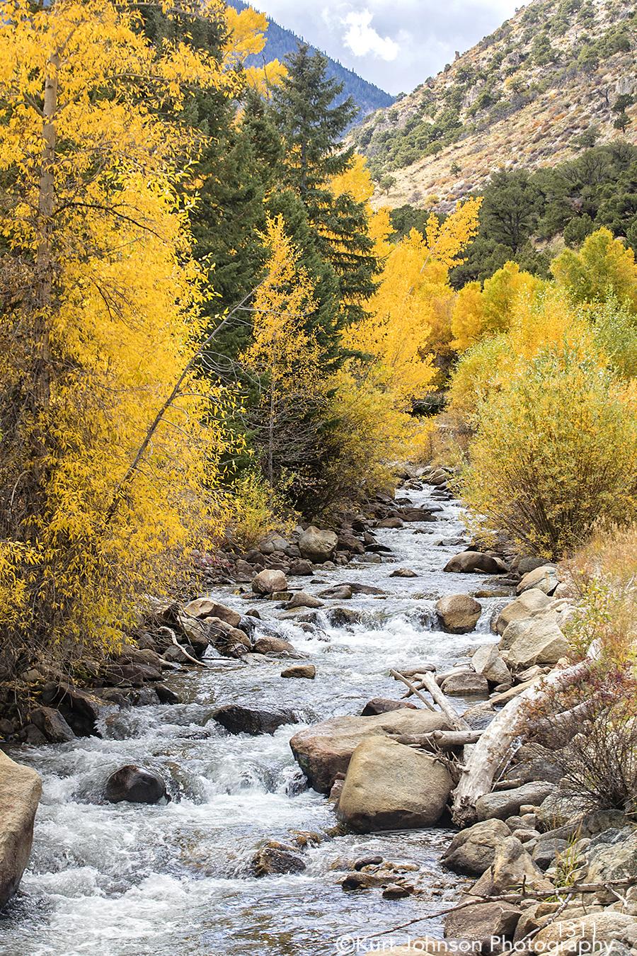water rocks stones yellow green trees river stream landscape Colorado waterscape