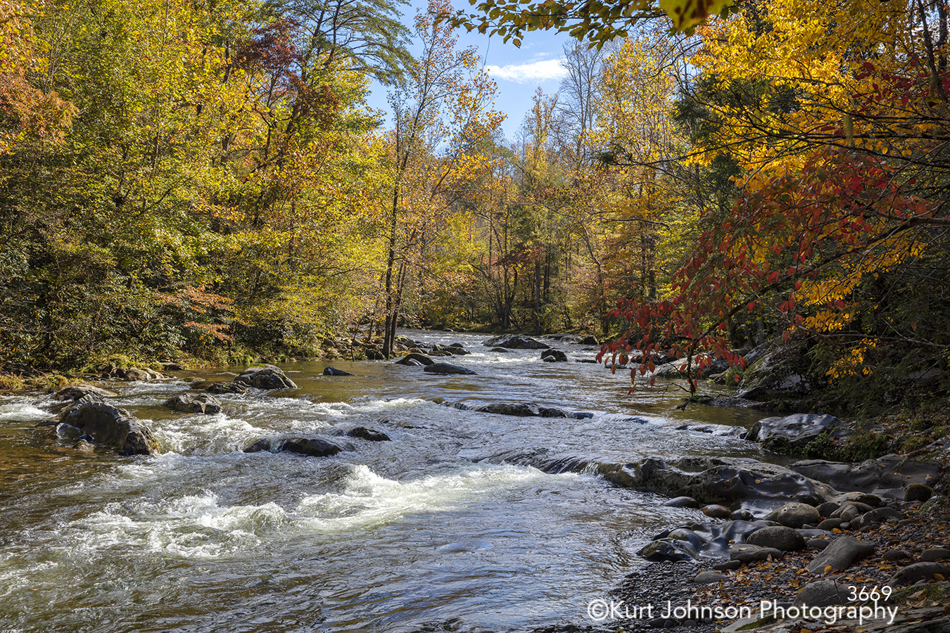 water waves river stream rocks yellow green red autumn fall tree trees waterscape landscape