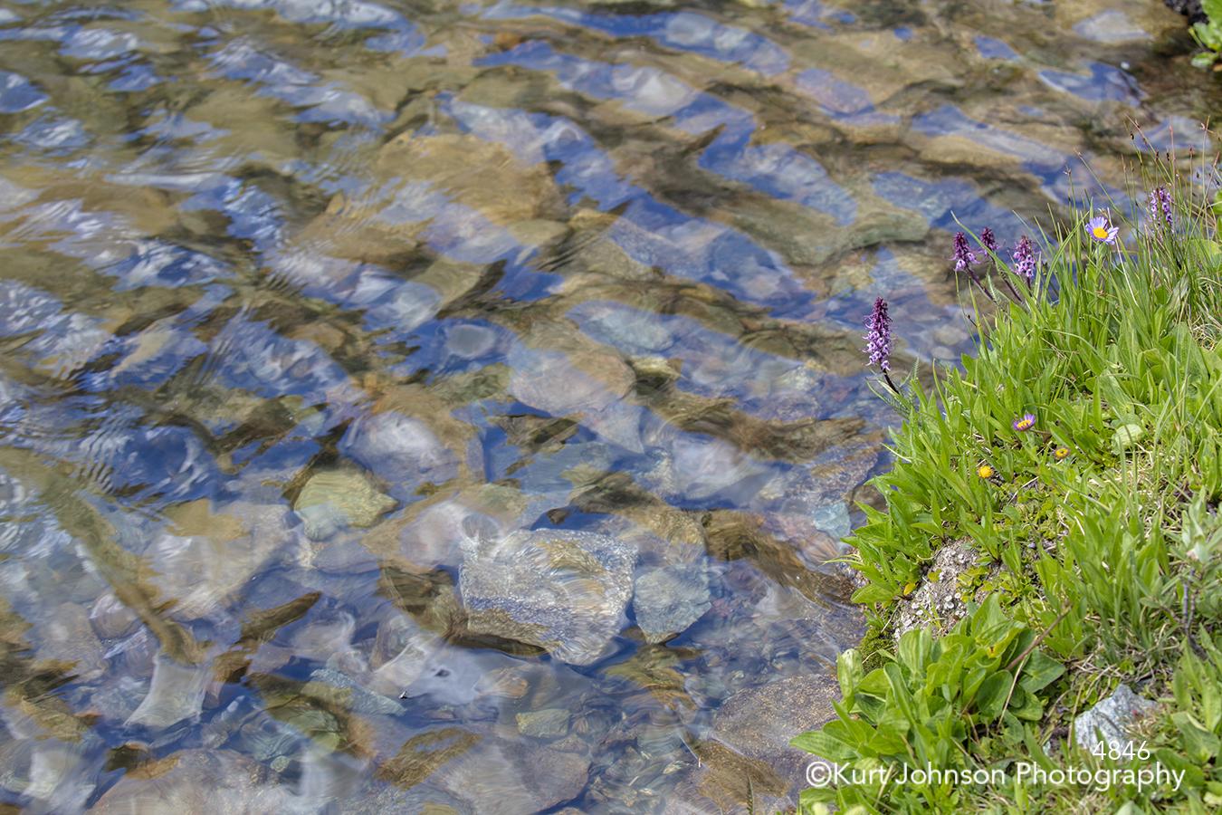 still calm water blue waves rocks stones green grass grasses waterscape edge