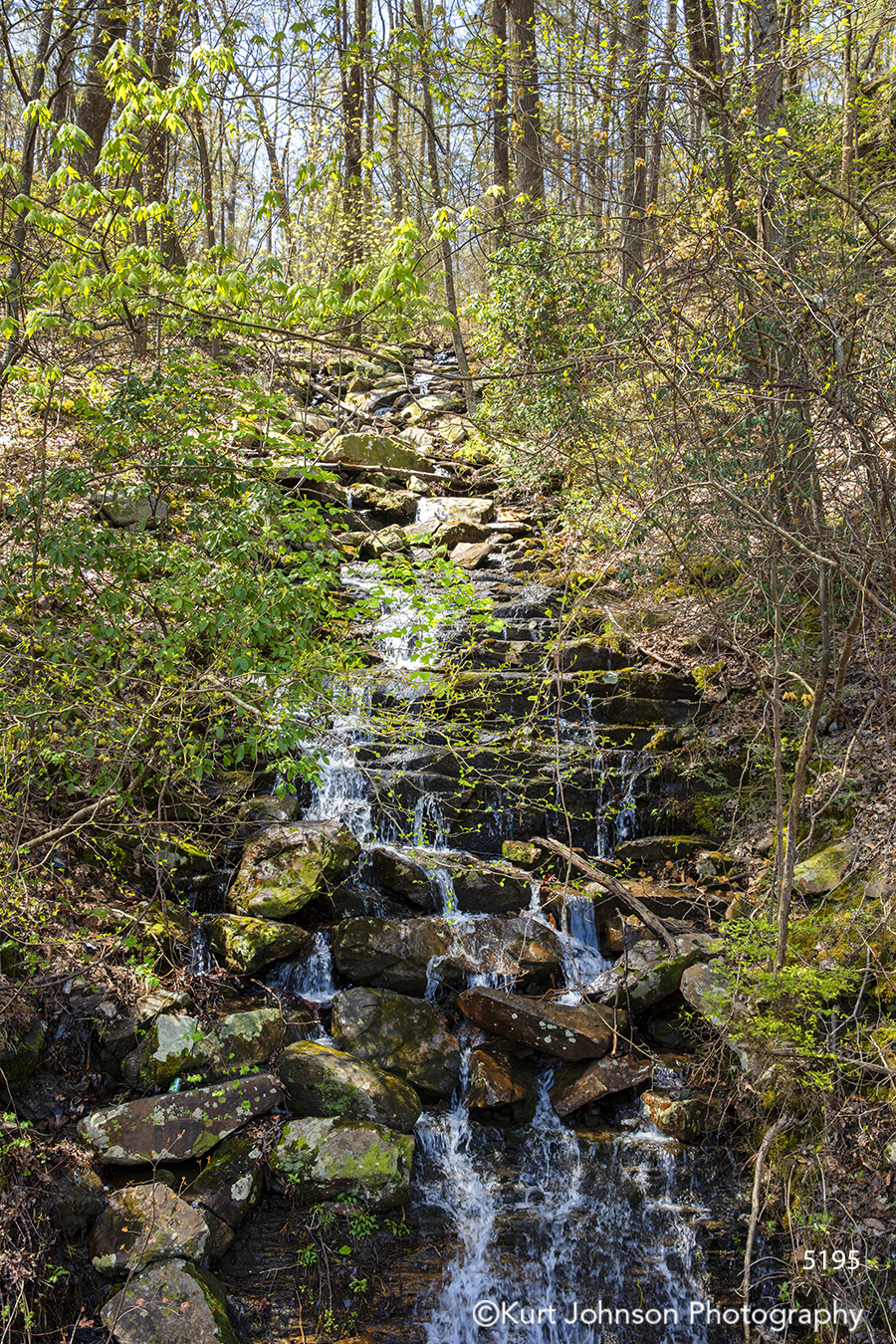 water waterfall green tree trees rocks stone river stream forest
