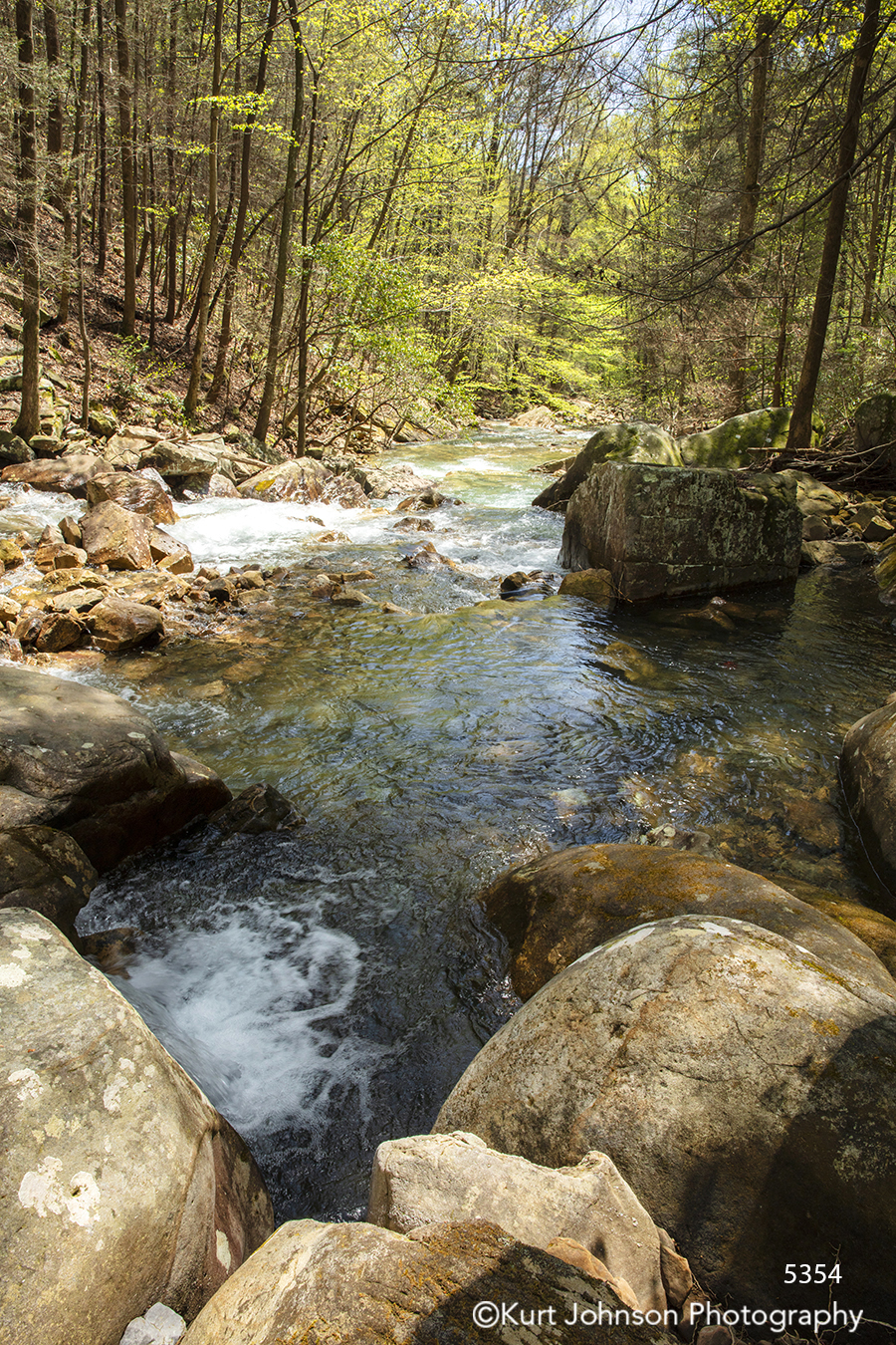 water waterscape rock rocks trees river stream pond forest