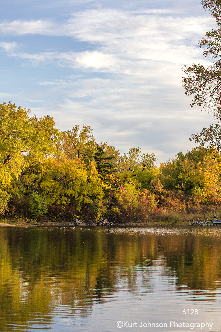 calm still water yellow trees autumn fall reflection river stream pond blue sky clouds waterscape landscape