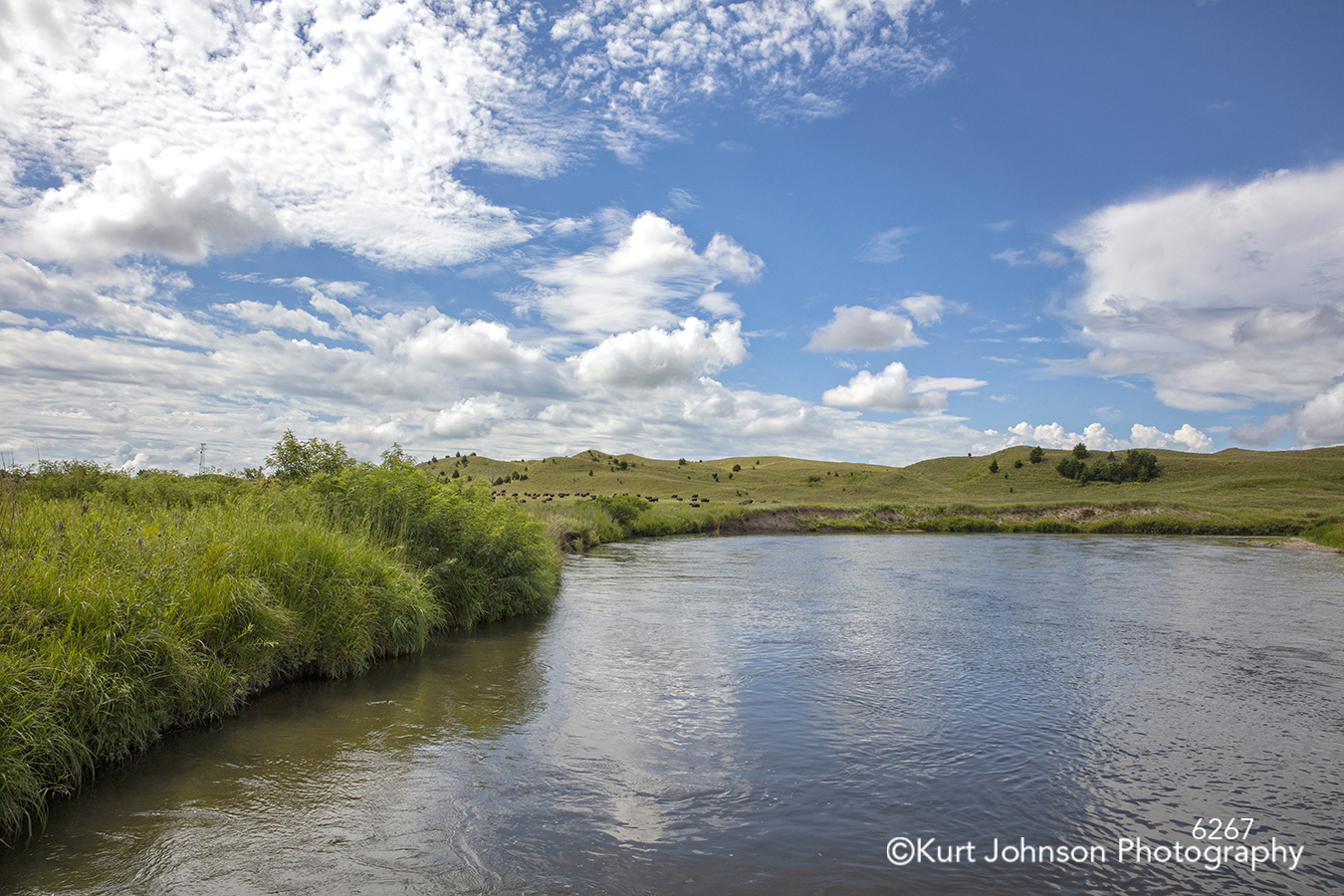 blue water waterscape river stream pond green grass blue sky clouds landscape midwest