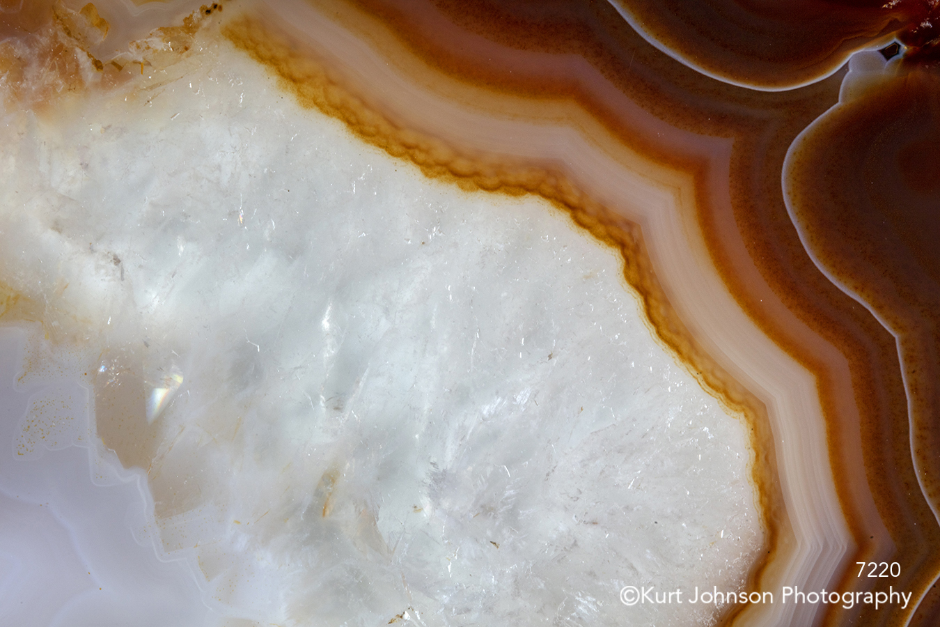 brown lines pattern white crystal geode agate texture stone rock close up detail