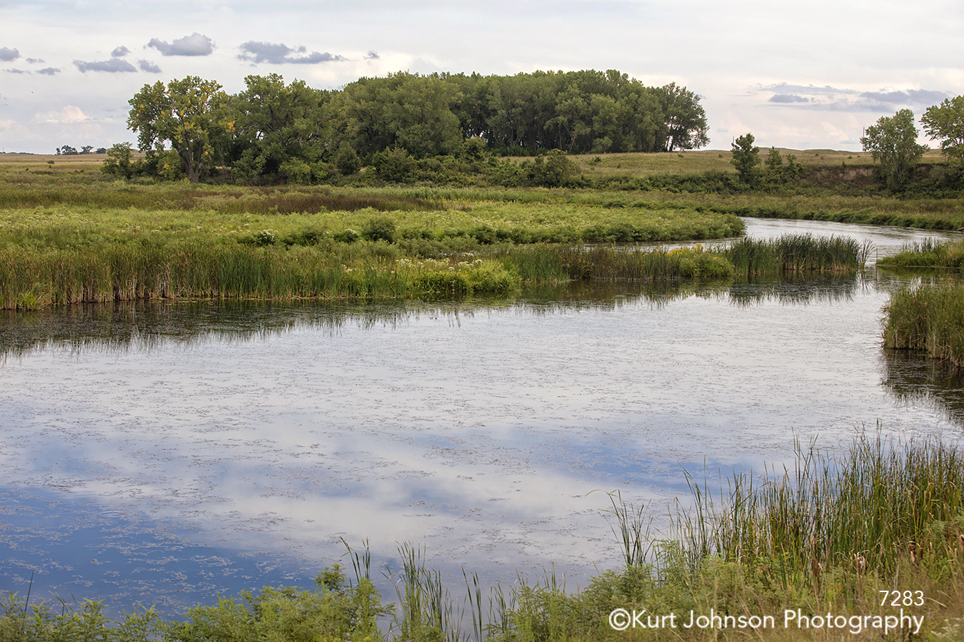 calm still water blue sky clouds reflection green grasses trees landscape waterscape