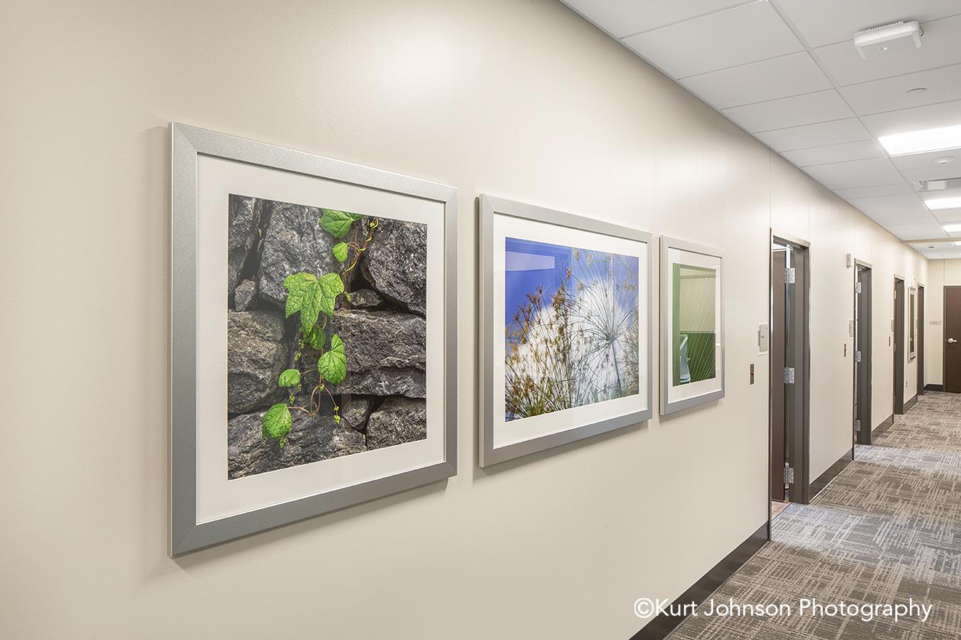 silver framed art botanical white matte frame hospital healthcare install Jennie Ed Methodist