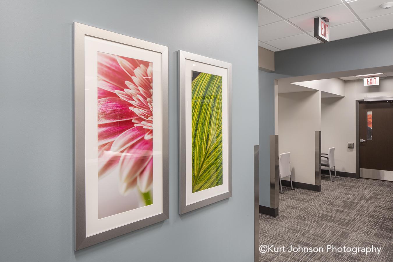 framed art silver frame white matte botanical flower healthcare hospital wall art installation Methodist Jennie Ed