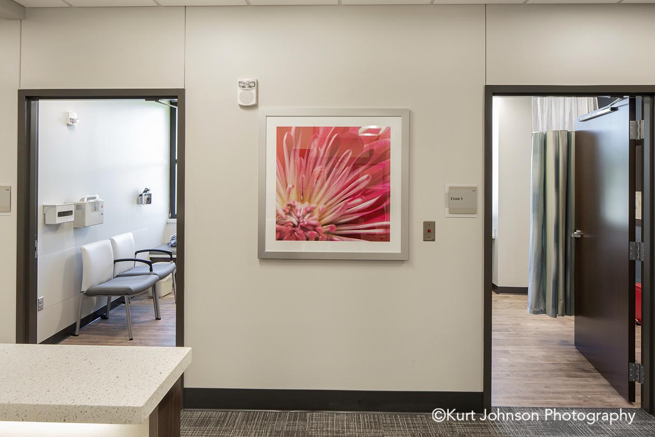 silver framed art pink flower botanical white matte frame hospital healthcare Jennie Ed Methodist