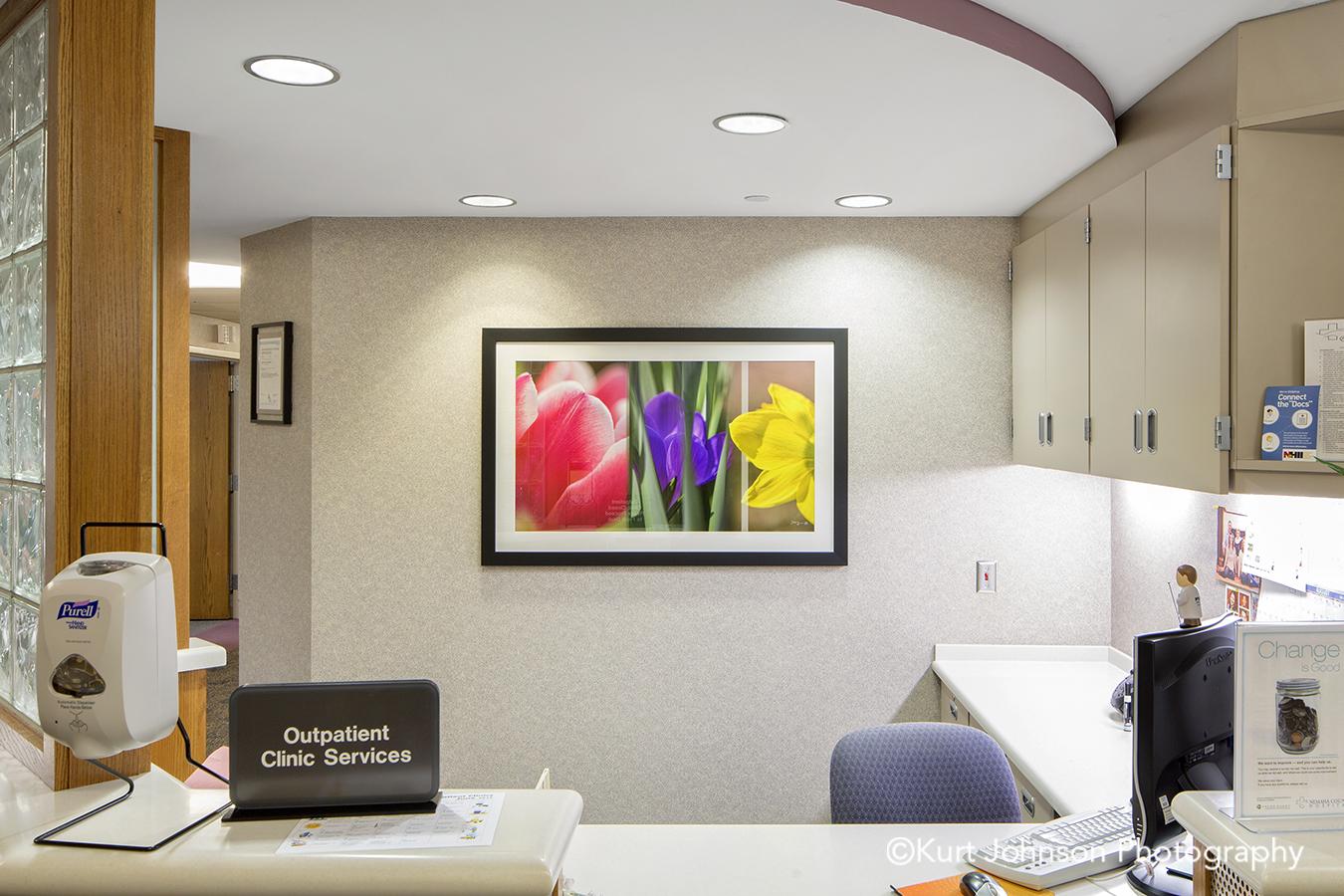 black frame white matte botanical flowers framed nature flower color slice art healthcare installation reception install