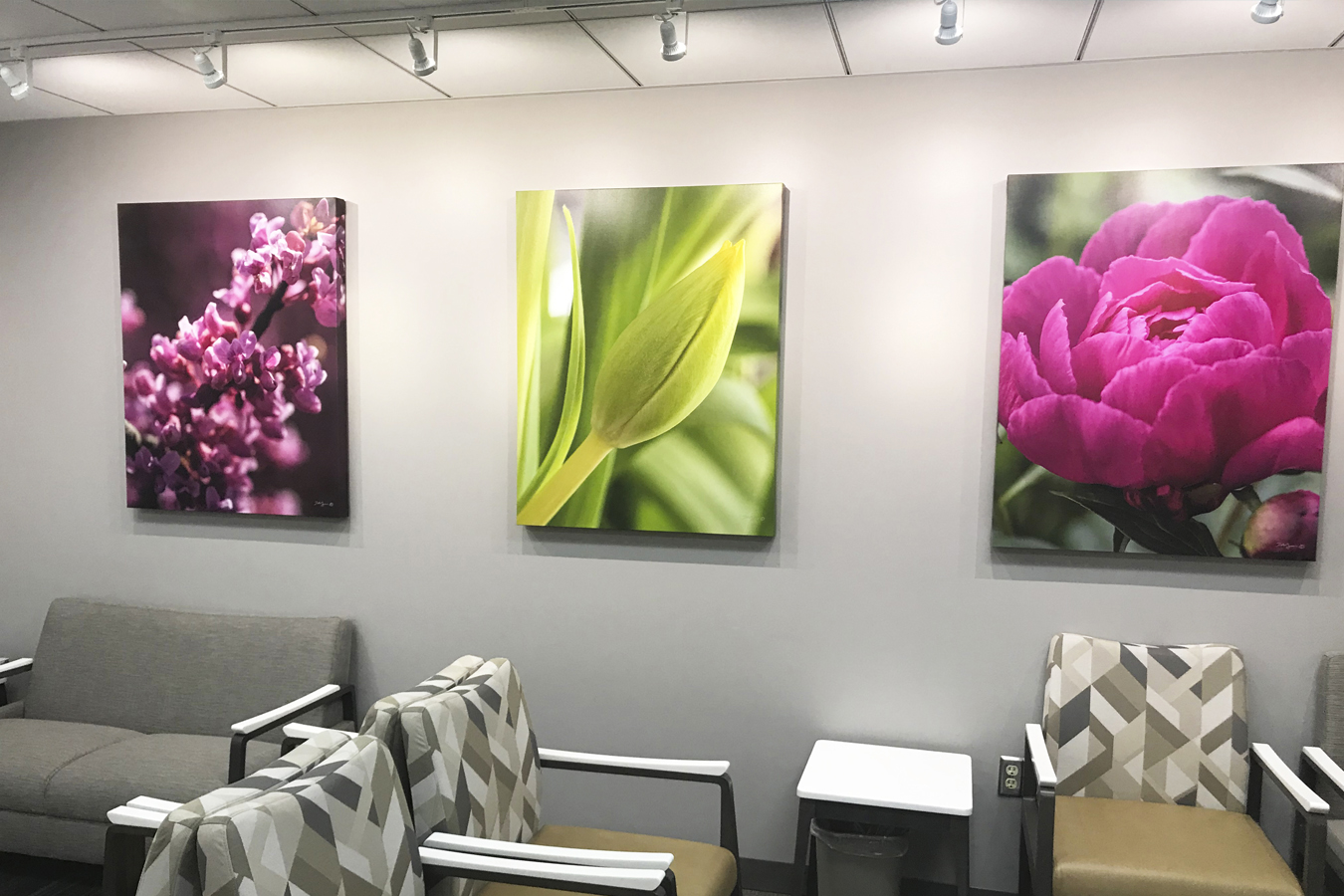 gallery wrapped canvas botanical flower flowers install healthcare waiting room installation