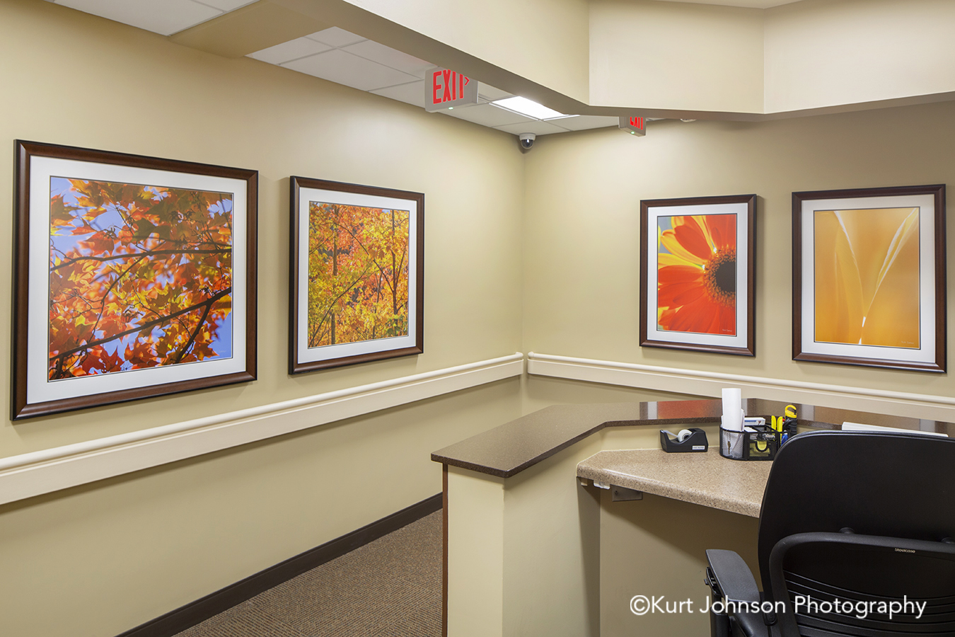 leaves flowers botanical framed art pender medical clinic nebraska brown wood frame white mattes install healthcare hospital installation