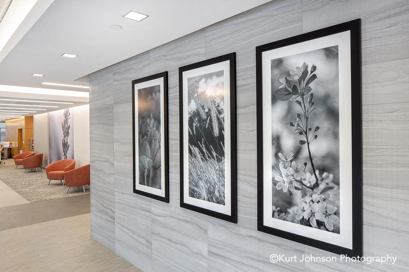 black frame white matte framed art install botanical leaves flower grass grasses flowers hallway corridor installation faith regional health norfolk ne