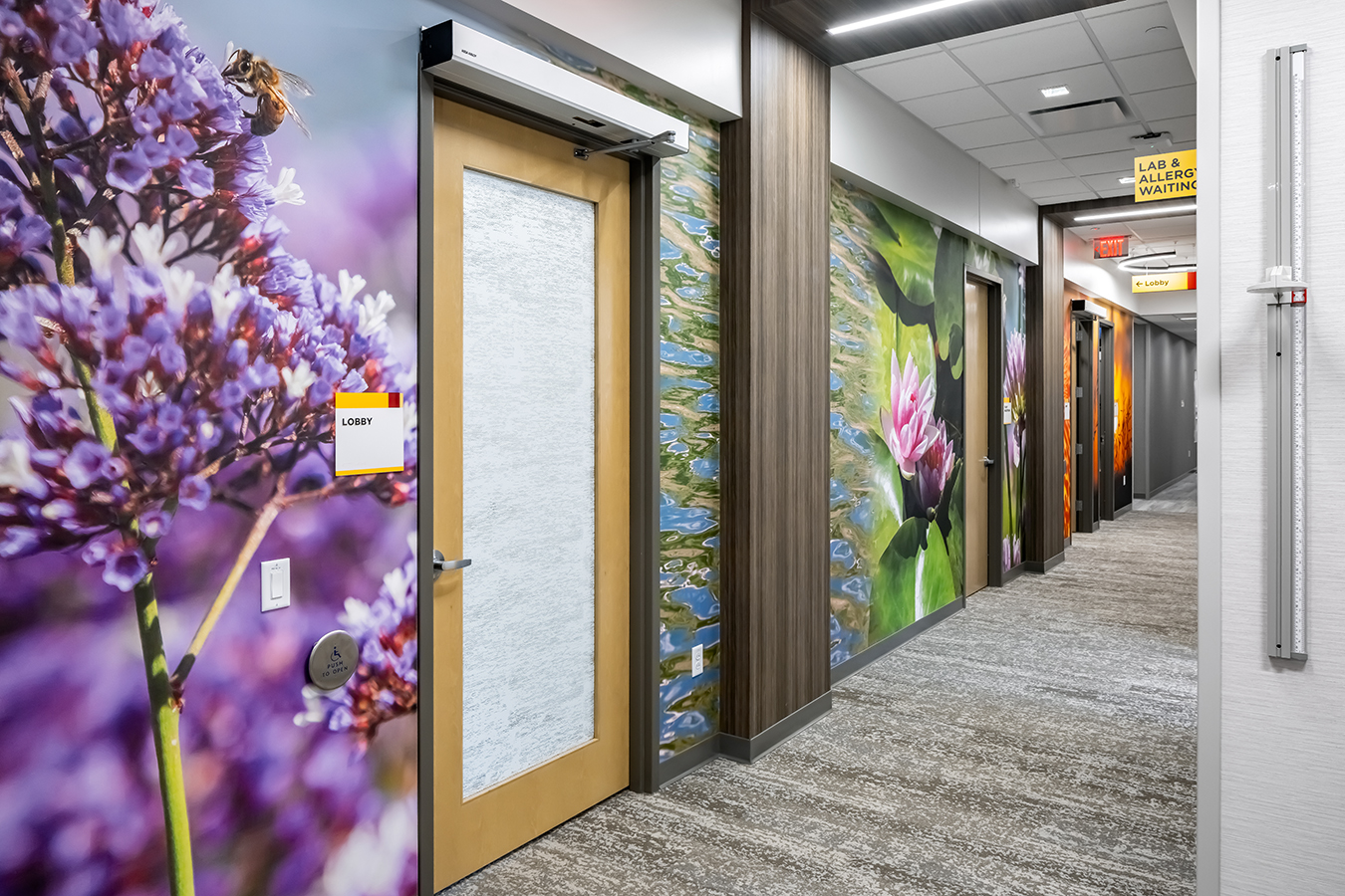 Fairview health services river falls WI Wisconsin BDH Koroseal large scale wallcovering custom color botanical flowers colorful slices graphic mural waiting positive distraction hall hallway corridor hospital art biophilic design wrap