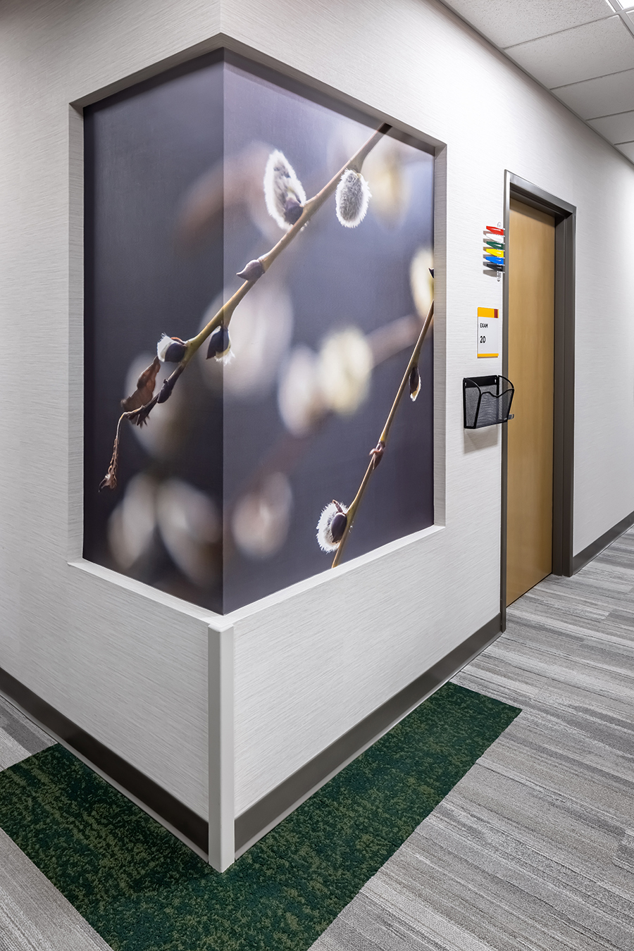 Fairview health services river falls WI Wisconsin BDH Koroseal large scale wallcovering graphic mural tree branch branches pussy willow close up hall hallway corridor